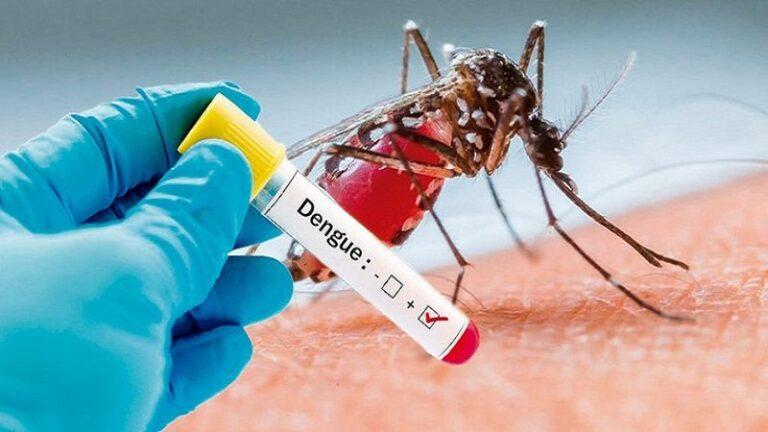 Sốt xuất huyết dengue